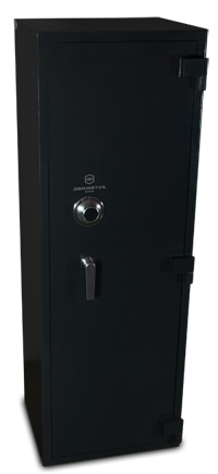Dominator Gun/Rifle Safes